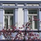 Teilbereich der Fassade: Fensterornament 1. Stock Mitte