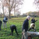 11-beim Abbau des Labyrinths November 2011